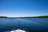 Bug von Le Boat Horizon Hausboot mit einem Schwarm kanadischer Gänse in der Luft und zwei Hausbooten in der Ferne, Big Rideau Lake, Ontario, Kanada, Nordamerika