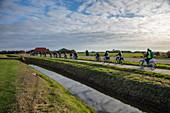 Menschen fahren Elektrofahrräder entlang Radweg neben Deich, nahe von Den Hoorn, Texel, Westfriesische Inseln, Friesland, Niederlande, Europa,