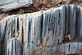 Angola; westlicher Teil der Provinz Cunene; Steinstrukturen; Nahaufnahme eines Felsbrockens in einem ausgetrockneten Flussbett