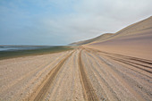 Angola; in the southern part of Namibe Province; northern part of the Namib Desert; Baia dos Tigres; Atlantic coast; large sand dunes that reach down to the sea