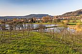 Waters in landscape near Pretzfeld in the afternoon, Upper Franconia, Bavaria, Germany