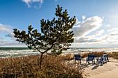 Beach chairs on the beach at Kellenhusen Baltic Sea, Ostholstein, Schleswig-Holstein, Germany