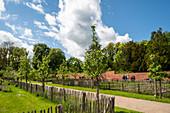Kitchen garden, Eutin Castle Garden, Holstein Switzerland Nature Park, Ostholstein, Schleswig-Holstein, Germany
