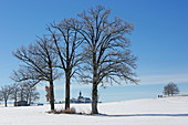 Winter day in Andechs Monastery, 5-Seen-Land, Upper Bavaria, Bavaria, Germany