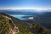 View from the Herzogstand over the Walchensee to the mountain range of the Alps, Bavaria, Germany