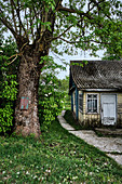 A pathway leads down the side of a traditional old weathered wooden home in a small village in the Grodno region, Belarus.