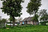 Verwittertes altes traditionelles Holzhaus auf üppig grüner Wiese, Region Grodno, Weißrussland