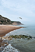 A view of Rock A Nore beach in Hastings, East Sussex, UK.