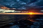in the Mediterranean Sea