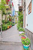 Historic district street, Lipari Town, Lipari Island, Aeolian Islands, Sicily, Italy
