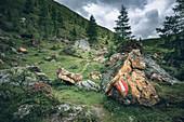 Klomnockrundweg with path markings on a red rock near the red castle, Nockberge Biosphere Park, Carinthia, Austria, Europe.