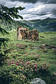 Red rocks at the red castle, Nockberge Biosphere Park, Carinthia, Austria, Europe.