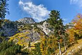 On the way to the Kleiner Ahornboden with a view of the Stuhlkopf, Hinterriß, Karwendel, Tyrol, Austria, Europe