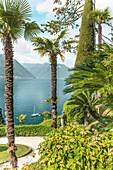 Palm garden of Villa Balbianello in Lenno on Lake Como, Lombardy, Italy