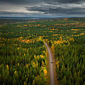 VW bus on lonely road through autumn forest in Sweden, Wilderness Road, from above