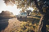 VW bus on mountain road, VW T6 California, VW bus on gravel road, Bulli, French Riviera, France