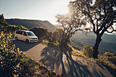 VW bus on mountain road, VW T6 California, Bulli, French Riviera, France
