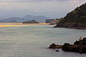Sandbanks on the Ria de Urdaibai, also called Ria Guernika or Ria Mundaka, Mundaka, Urdaibai Biosphere Reserve, Basque Country, Spain