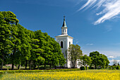 Typical old church with avenue and rapeseed field on a beautiful summer day, Västra Götaland, Sweden