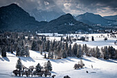 View of the Algäuer Alps in winter, Hohenschwangau Castle, Allgäu, Bavaria, Germany, Europe