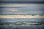 Ice floes on the beach in the evening light with a view of Mellum Island, Schillig, Wangerland, Friesland, Lower Saxony, Germany, Europe