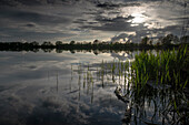 Evening mood at Accumer See, Schortens, Friesland, Lower Saxony, Germany, Europe