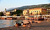 Torri del Benaco, east bank, Lake Garda, Veneto, Italy