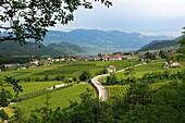 View of Kaltern, South Tyrol, Italy