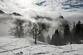 Foggy mood below the Priener Hut, Chiemgau Alps, Sachrang, Bavaria, Germany