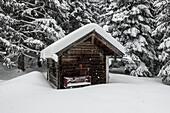 Hut in the snow, Chiemgau Alps, Ruhpolding, Bavaria, Germany