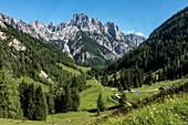 The Ramsau Dolomites rise behind the Bindalm, Berchtesgaden Alps, Bavaria, Germany