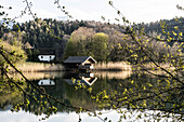 Höglwörther See, Anger, Bavaria, Germany