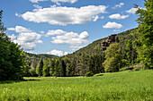 Stephanstal with the Stephansturm, Hauenstein, Rhineland-Palatinate, Germany