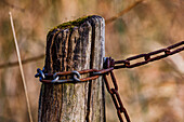 An iron chain is screwed to an old wooden post in the great outdoors