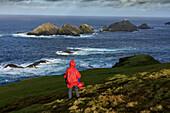 Hiker in red rain cape, Hermaness Nature Reserve, Muckle Flugga, Shetland, Scotland UK