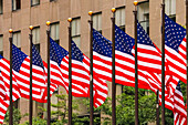 The banner called Stars and Stripes forms the flag of the United States of America