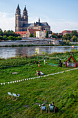 Young people sit on the Elbe in deck chairs, behind them Magdeburg Cathedral, Saxony-Anhalt, Germany