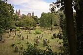 Old Jewish cemetery Heiliger Sand in Worms, UNESCO World Heritage ShUM cities, Rhineland-Palatinate, Germany, Europe