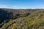 Selketal in autumn, Harz, Saxony-Anhalt, Germany