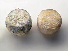 Goat's cheeses (Crottin de Chavignol & Picodon de la Drome)