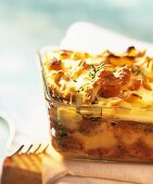 Chicken lasagne with apricots