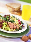 Green salad with carved duck breast