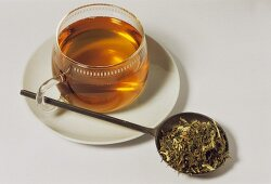 Goat's rue tea and dried herb (Galegae herba)