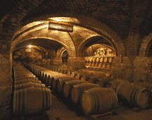 Viña San Pedro wine cellar, Lontué, Valle de Curico, Chile