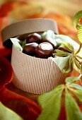 Chocolate chestnuts in a sweet box