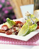 Dried tomatoes with lettuce hearts for picnic