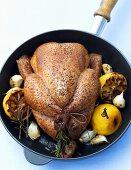 Lemon chicken with garlic and rosemary