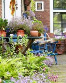 Various plants in pots and furniture in inner courtyard of a town house