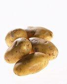 Five potatoes, variety 'Nicola'