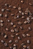 Coffee beans on ground coffee